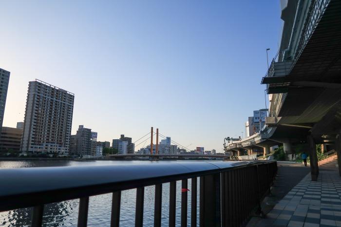 隅田川テラスの柵